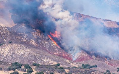 Get Ready. Another Fire Season Is Upon Us