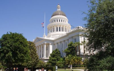 The Possibility of a Californian Green New Deal